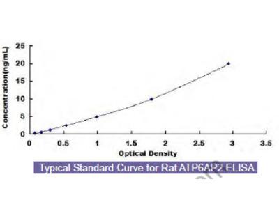 Rat ATPase, H+ Transporting, Lysosomal Accessory Protein 2 (ATP6AP2) ELISA Kit