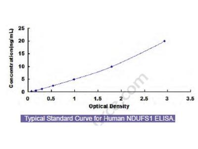 Human NADH Dehydrogenase Ubiquinone Fe-S Protein 1 (NDUFS1) ELISA Kit