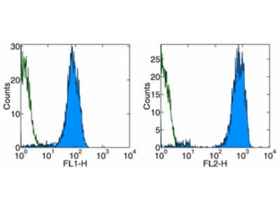 Mouse monoclonal CD42b antibody