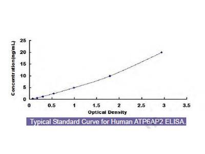 Human ATPase, H+ Transporting, Lysosomal Accessory Protein 2 (ATP6AP2) ELISA Kit