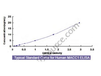 Human Metastasis Associated In Colon Cancer 1 (MACC1) ELISA Kit