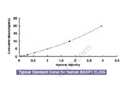 Human Brain Abundant, Membrane Attached Signal Protein 1 (BASP1) ELISA Kit