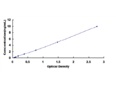 Rat B-Cell CLL/Lymphoma 2 Like Protein 2 (Bcl2L2) ELISA Kit