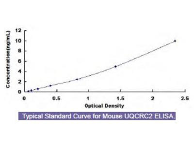 Mouse Ubiquinol Cytochrome C Reductase Core Protein II (UQCRC2) ELISA Kit