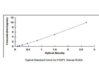 Forkhead Box Protein P1 (FOXP1) ELISA Kit