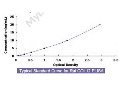 Rat Collagen Type XII (COL12) ELISA Kit