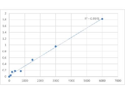 Human Epidermal Growth Factor-Like Protein 6 (EGFL6) ELISA Kit