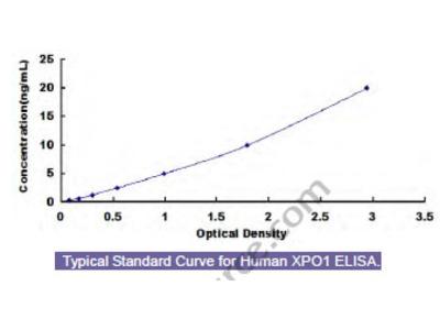 Human Exportin 1 (XPO1) ELISA Kit
