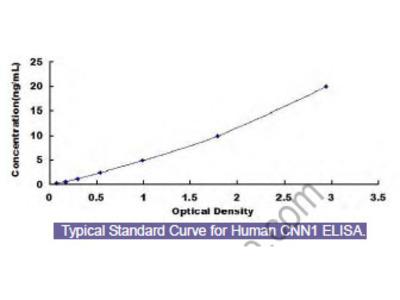 Human Calponin 1, Basic (CNN1) ELISA Kit
