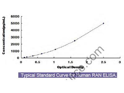 Human Guanosine Triphosphatase Ran (RAN) ELISA Kit