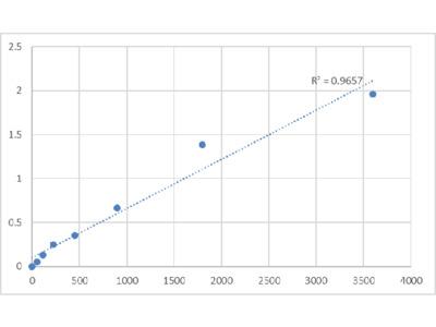 Human TOMM20-Like Protein 1 (TOMM20L) ELISA Kit