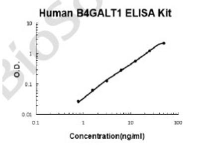 Human B4GALT1 PicoKine ELISA Kit
