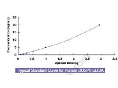 Human Dual Specificity Phosphatase 6 (DUSP6) ELISA Kit