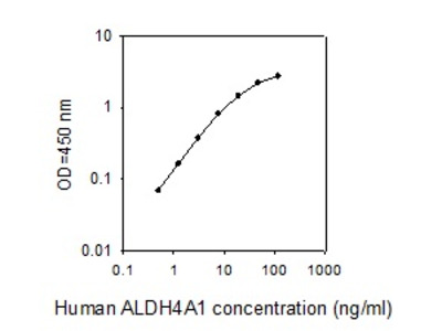 Human ALDH4A1 ELISA