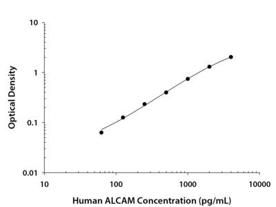 ALCAM /CD166 ELISA