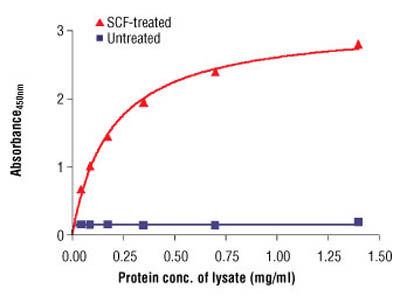PathScan ® Phospho-c-Kit (Tyr719) Sandwich ELISA Antibody Pair
