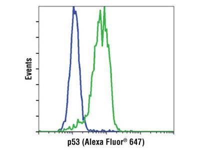 p53 (1C12) Mouse mAb (Alexa Fluor ® 647 Conjugate)