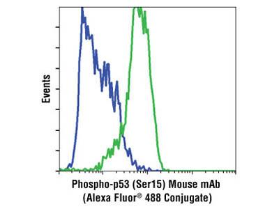 Phospho-p53 (Ser15) (16G8) Mouse mAb (Alexa Fluor ® 488 Conjugate)