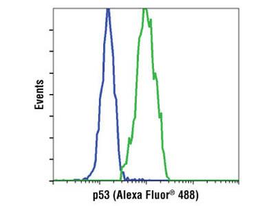 p53 (1C12) Mouse mAb (Alexa Fluor ® 488 Conjugate)