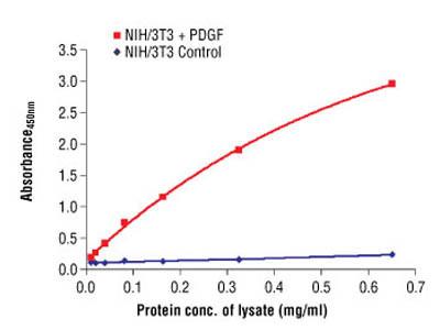 PathScan ® Phospho-Akt (Thr308) Sandwich ELISA Antibody Pair