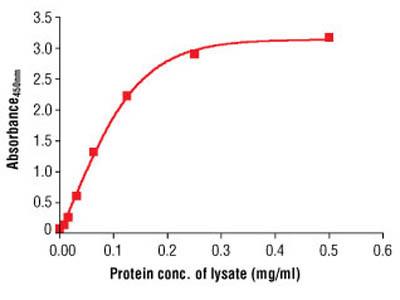 PathScan ® Total α-Tubulin Sandwich ELISA Antibody Pair
