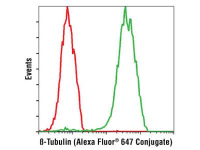 β-Tubulin (9F3) Rabbit mAb (Alexa Fluor ® 647 Conjugate)
