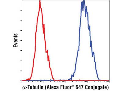 α-Tubulin (11H10) Rabbit mAb (Alexa Fluor ® 647 Conjugate)
