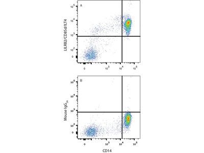 LILRB2 /CD85d /ILT4 Antibody