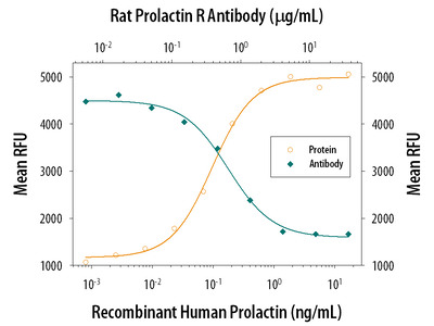 Prolactin R / PRLR Antibody
