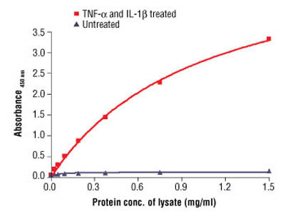 PathScan ® Phospho-IκBα (Ser32) Sandwich ELISA Antibody Pair