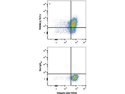 TREML1 /TLT-1 Antibody