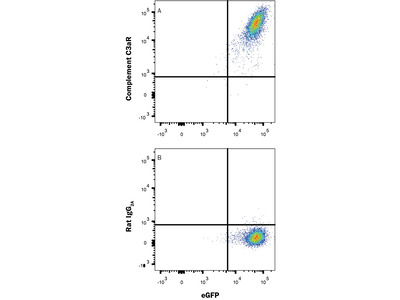 Complement Component C3aR Antibody