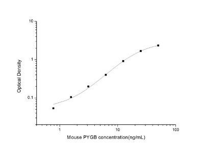 Glycogen Phosphorylase BB/GPBB ELISA Kit