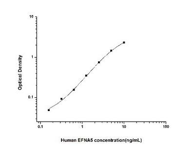 Ephrin-A5 ELISA Kit