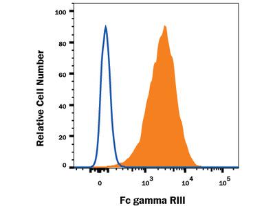 Mouse Fc gamma RIII (CD16) Antibody