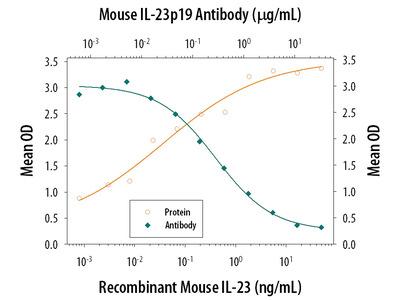 IL-23 p19 Antibody