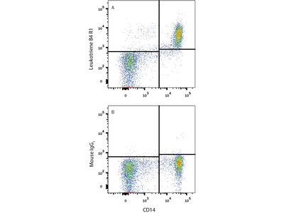 Leukotriene B4R1 / BLT1 PE-conjugated Antibody