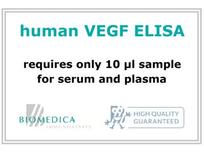 Human VEGF ELISA