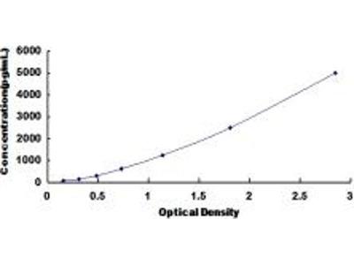 o-6-methylguanine-dna methyltransferase ELISA Kit