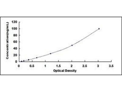 D Amino Acid Oxidase ELISA Kit