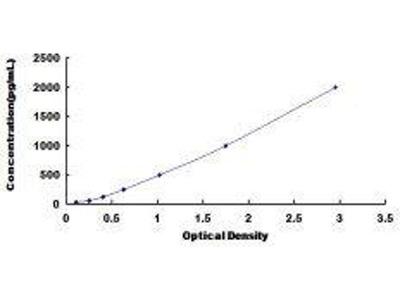 Peptidylglycine alpha-amidating monooxygenase antibody test