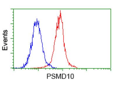 Anti-PSMD10 antibody [3F6]