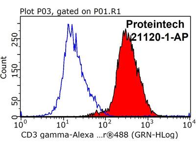 CD3 gamma Antibody