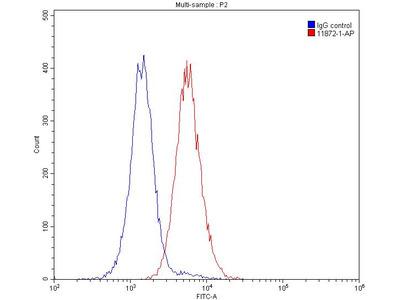 TIM3 antibody