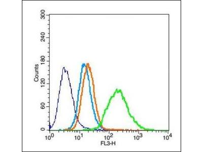 Thymosin alpha 1 antibody