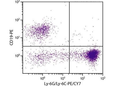 anti-Ly-6G/GR-1 antibody (PE,Cy7)