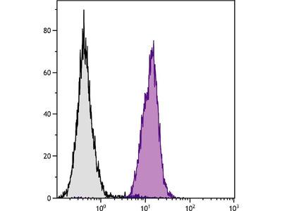 anti-H-2Dd antibody (Biotin)