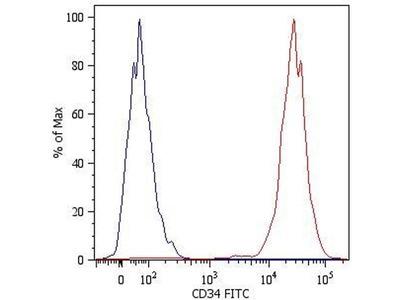 anti-CD34 Molecule (CD34) antibody (PE)