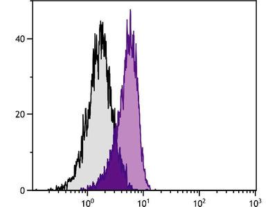 anti-interleukin 10 Antibody