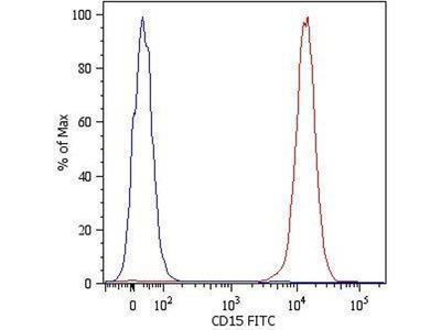 anti-FUT4 antibody